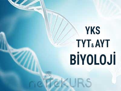 YKS - TYT AYT Biyoloji Dersleri