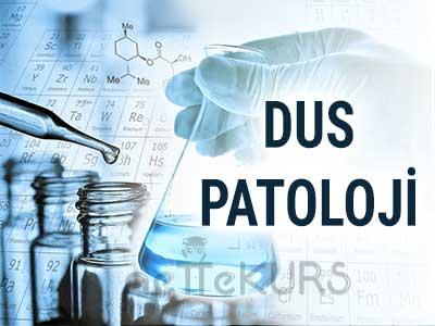DUS Tıbbi Patoloji Video Ders