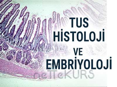 2018 TUS Histoloji ve Embriyoloji