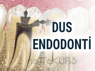 DUS Endodonti Dersleri