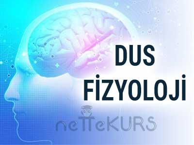 DUS Fizyoloji Dersleri