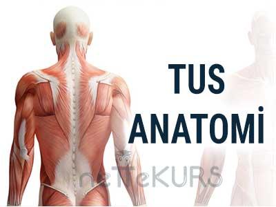 TUS Anatomi Dersleri